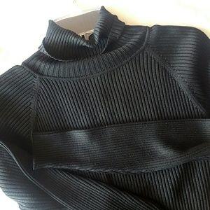 Ann Taylor | 100% Silk Ribbed Turtleneck Sweater